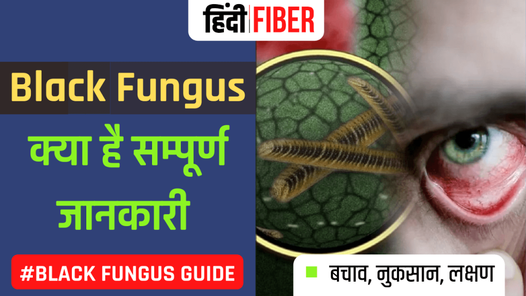image for black fungus
